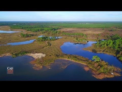 Cap Sud Ouest: les lacs du Médoc, joyaux de la côte Atlantique