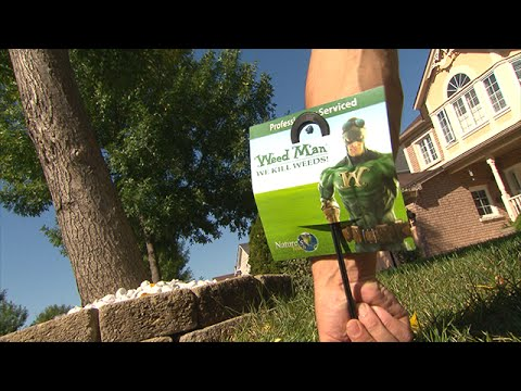 Lawn Care Scam Weed Mans Angry Customers Cbc Marketplace