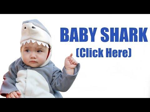 Baby Shark Dance Trend
