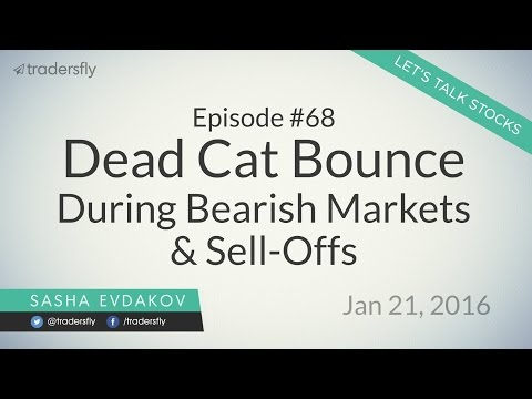 Ep 68: Dead Cat Bounce During Bearish Market Sell-offs (Stock Market)