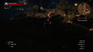 The Witcher 3: Wild Hunt GOTY -- Part 14