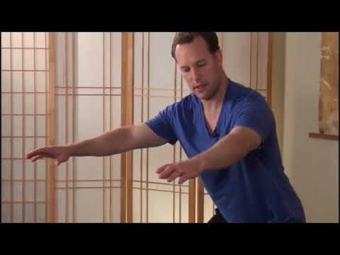 Цигун для начинающих видео уроки смотреть бесплатно для похудения