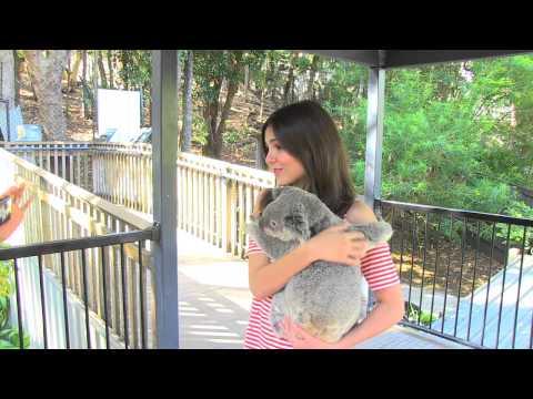 Victoria Justice cuddles the Koala's in Australia.mov