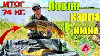 ЛОВЛЯ КАРПА ЛЕТОМ КАРПФИШИНГ CARP FISHING IN SUMMER CARPFISHING