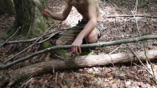Primitive Technology: Wood Hut
