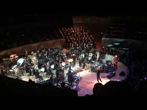 Download The Flaming Lips w/ Colorado Symphony Orchestra Buggin' - Denver 2.22.19 live Mp4 baru