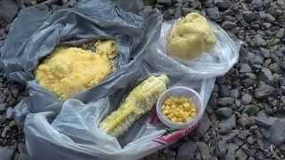 Кукуруза для ловли карпа(Ловля карпа в Монреале на консервированную кукурузу и кукурузную муку. Оснастка - скользящее грузило и..., 2014-08-27T22:23:49.000Z)