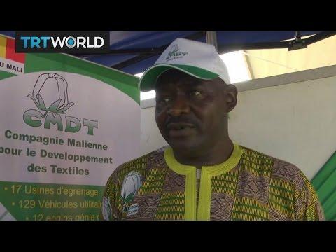 Money Talks: Beninese cotton farmers are struggling