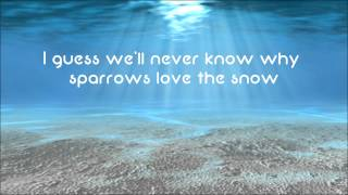 Owl City - The Saltwater Room [HD Lyrics + Description] Video