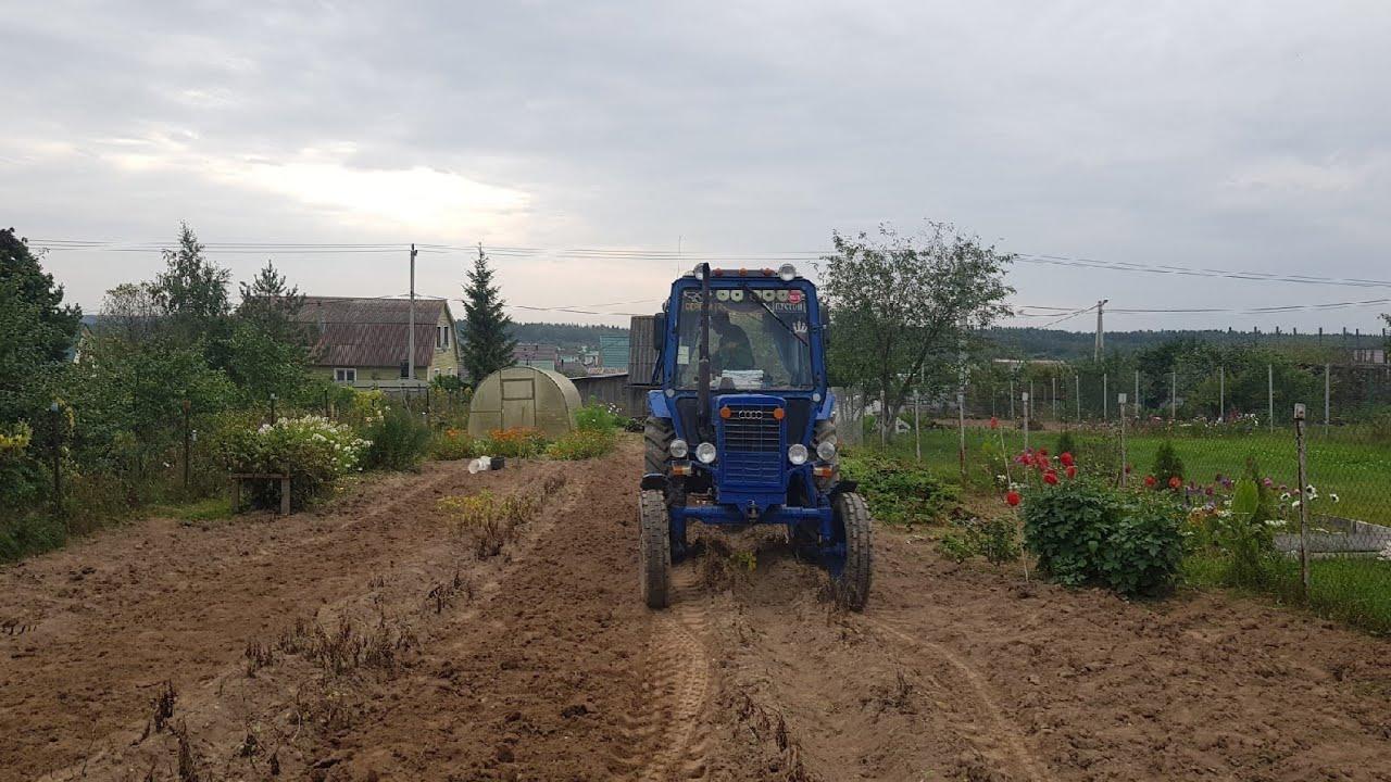 Трактор МтЗ-80,МТЗ-82 копаю свой огород. Вот такой урожай 2020 году