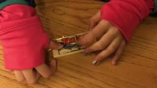 12 YEAR OLD SETS MOUSE TRAP
