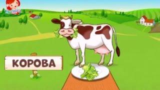 Животные - что едят животные - как разговаривают животные - для детей  #cartoon #мультфильмы