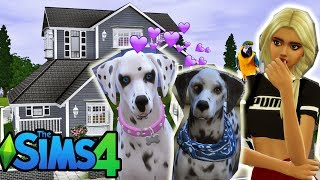 Pokazuje Wam HOTEL DLA ZWIERZAKÓW  The Sims 4