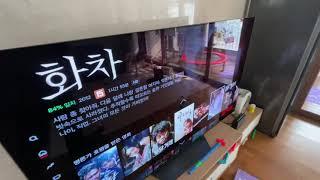 LG OLED TV 샀어요