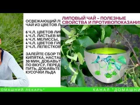 Липовый чай успокаивает, улучшает пищеварение, лечит простуду Домашний лекарь выпуск №54