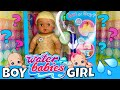 💦Waterbabies Magic Wonder Baby Doll Reveal! Is It A Boy Or A Girl? 👚🤷🏼♀️👕