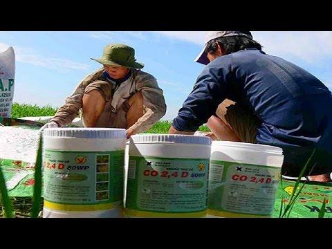 VinaCert - Chứng nhận hợp quy thuốc bảo vệ thực vật