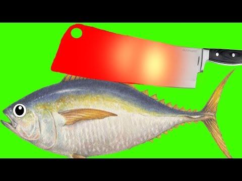 EXPERIMENT GLOWING 1000 DEGREE MEAT CHOPPER VS FISH TUNA