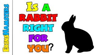 ARE RABBITS RIGHT FOR ME?