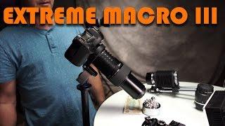 Extreme Macro 3 - More vintage Lenses Canon MP-E 65mm, Leica 100mm F4