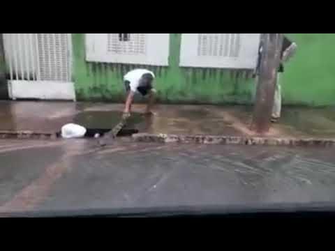 Internauta flagra jacaré em rua de Santo Antônio do Leverger após chuva