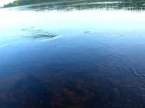 Torneälv, Tornionjoki, Torne river