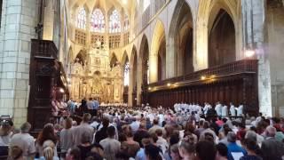 Peuple de prêtres - Cathédrale St Etienne à Toulouse