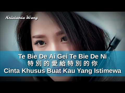 Te Bie De Ai Gei Te Bie De Ni - 特別的愛給特別的你 - 雷婷 Lei Ting