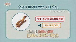 [피부 관리 TIP] 피부 노화 예방에 도움을 주는 홍…