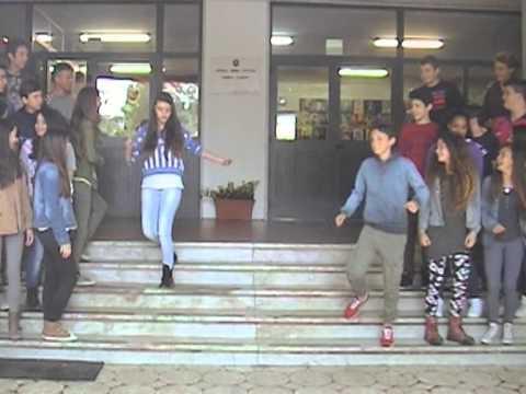 Happy Scuola Taliercio Marina di Carrara