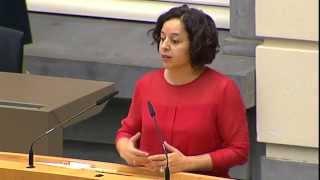 Yamila Idrissi ondervraagt Sven Gatz over de overheveling van lokale cultuurmiddelen