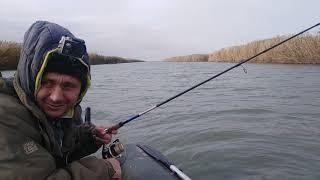 Ловля щуки Отводной поводок Рыбалка на Маныче