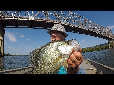 Multi-Species Fishing On The Tennessee River