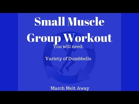 Small Muscle Group Workout/Food is Fuel?