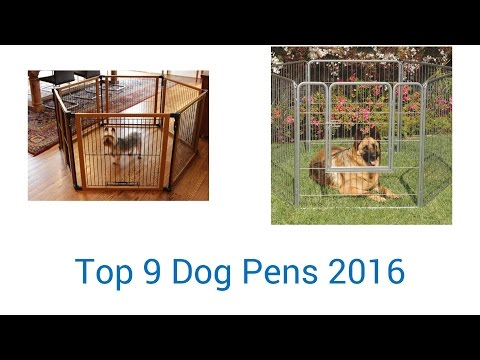 9 Best Dog Pens 2016