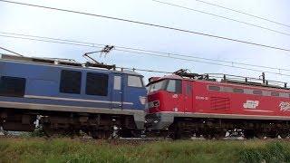 EF510-506+EF510-21(無動力回送)高速貨物3097レ 信越本線下り