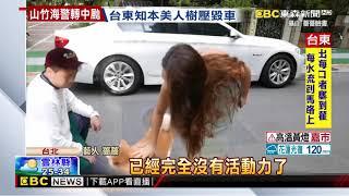 薔薔暴怒控訴 愛犬栗子被鄰居「踢到呆滯」 栗子 動画 26