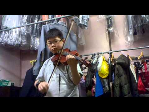 Somebody That I Used To Know - Gotye Violin Cover