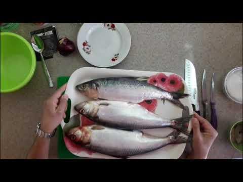 Солим рыбу: каспийский залом + спред из сайры