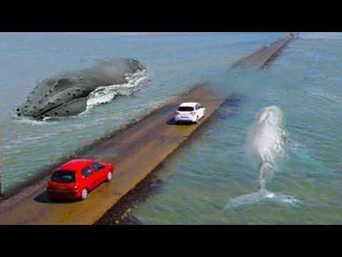 Membelah Lautan, Jalanan Paling Berbahaya Di Dunia Dengan Pemandangan Yang Indah