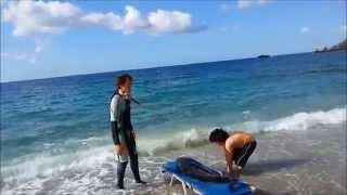 Δελφίνι διάσωση από Αρίων Πάσχα 2014 young dolphin rescue from ARION