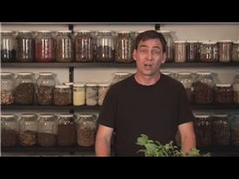 Herbal Home Remedies  : Home Remedy for Chest Congestion and Cough