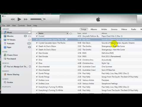 How to Display and Delete Duplicate Songs in Itunes 11 (Latest version)
