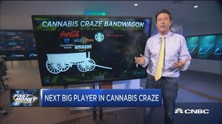 The next big player in the cannabis craze. With CNBC's Scott Wapner...