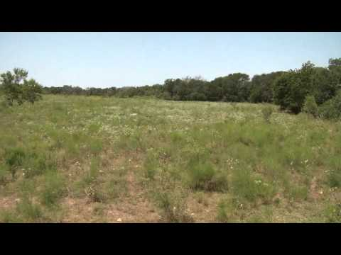 For Sale: 111 Acres in Riesel, TX.