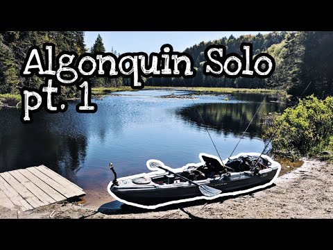 15km Paddle Into Native Brook Trout Waters - Algonquin Solo Pt.1