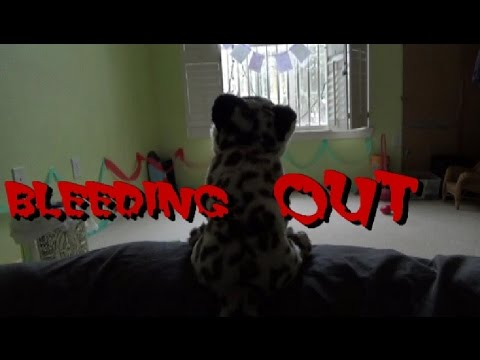Bleeding Out Webkinz Music Video