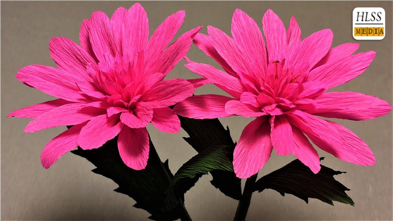 How to make dahlia paper flower diy dahlia crepe paper flower making tutorials paper crafts how to make dahlia paper flower diy dahlia crepe paper flower making tutorials paper crafts mightylinksfo
