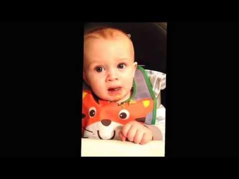 Raising a gourmand- salmon, quinoa & peas