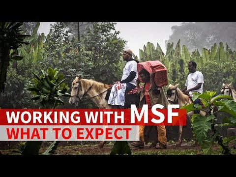 Working with MSF: What to expect